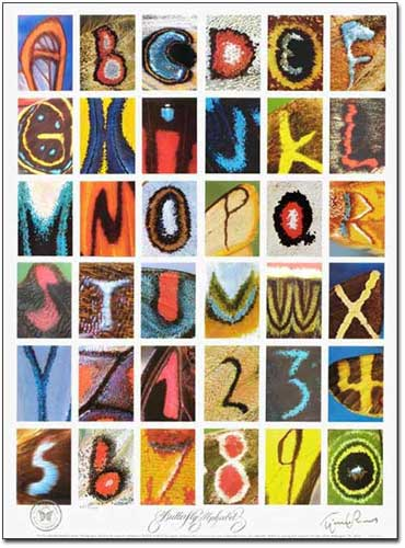 Butterfly Alphabet Poster Gold Edition